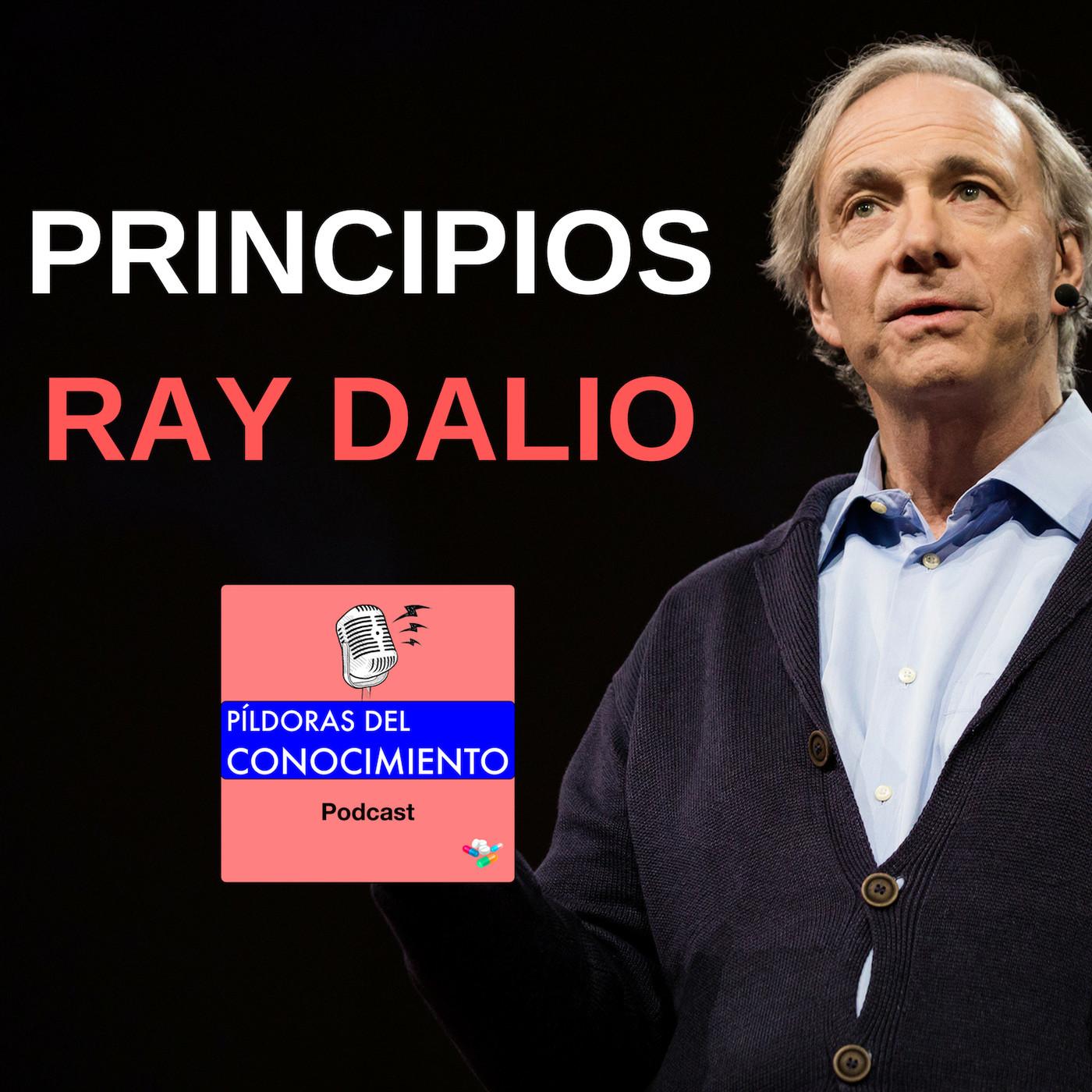 24. RAY DALIO: PRINCIPIOS de inversión
